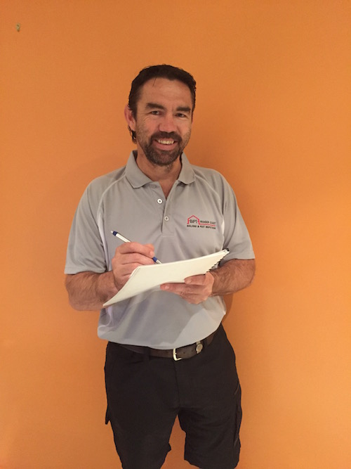building and pest inspections hervey bay