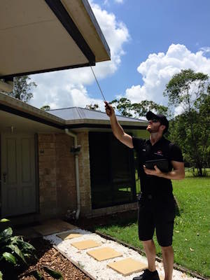 chris jacobson building and pest inspections sunshine coast