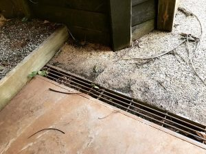 How Blocked Drains Can Cause Serious Water Damage