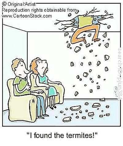 termite cartoon