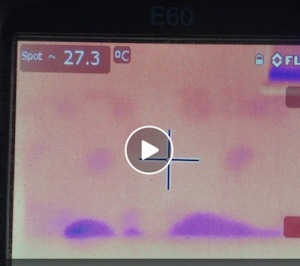 Rising Moisture Found By Thermal Imaging Camera!